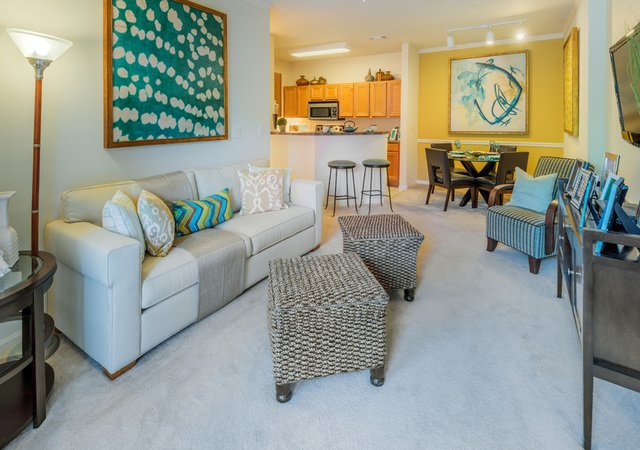 Tradition at Stonewater Apartments - Living Room