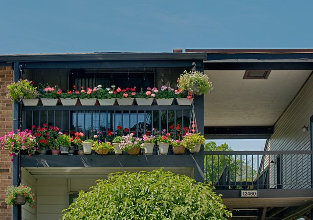 Whisper Hollow Apartments - Balcony with Flowers
