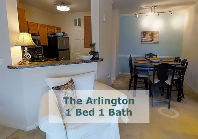 Tradition at Stonewater Apartments - The Arlington Kitchen Area
