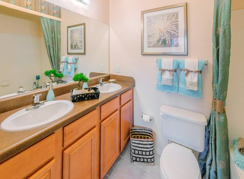 Tradition at Stonewater Apartments - Bathroom with Wood Cabinets